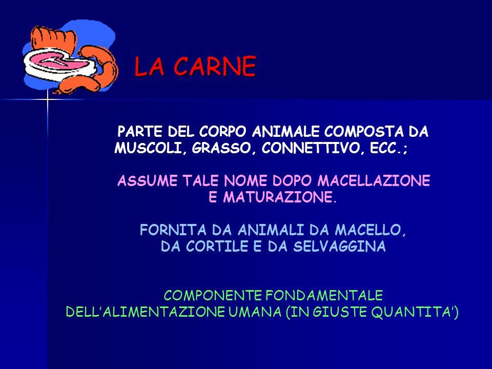 LA CARNE PARTE DEL CORPO ANIMALE COMPOSTA DA MUSCOLI, GRASSO, CONNETTIVO, ECC.; ASSUME TALE NOME DOPO MACELLAZIONE.