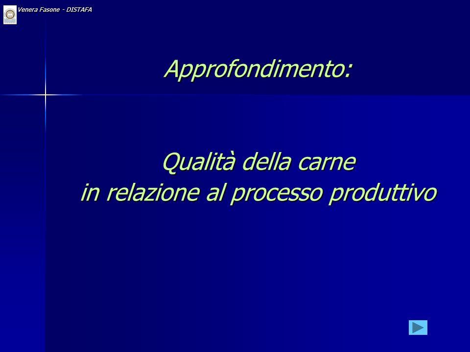 in relazione al processo produttivo