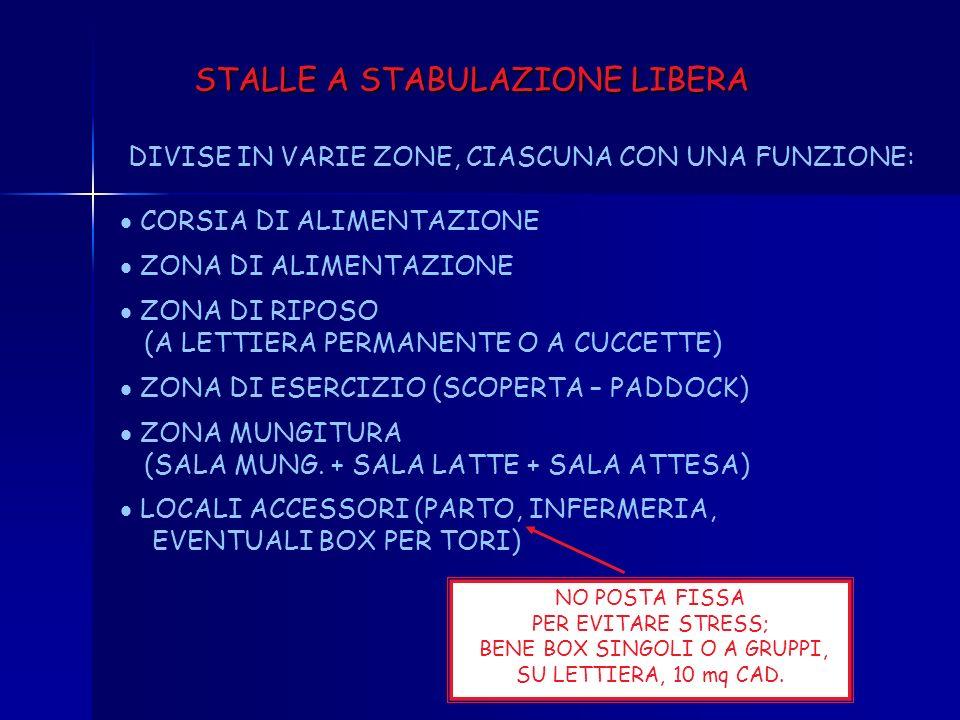 BENE BOX SINGOLI O A GRUPPI, SU LETTIERA, 10 mq CAD.