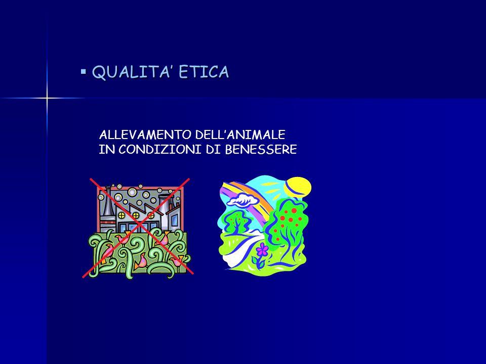 QUALITA' ETICA ALLEVAMENTO DELL'ANIMALE IN CONDIZIONI DI BENESSERE
