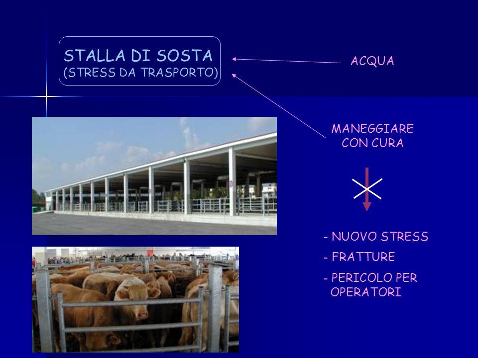 STALLA DI SOSTA ACQUA (STRESS DA TRASPORTO) MANEGGIARE CON CURA
