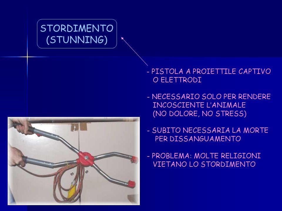 STORDIMENTO (STUNNING) - PISTOLA A PROIETTILE CAPTIVO O ELETTRODI