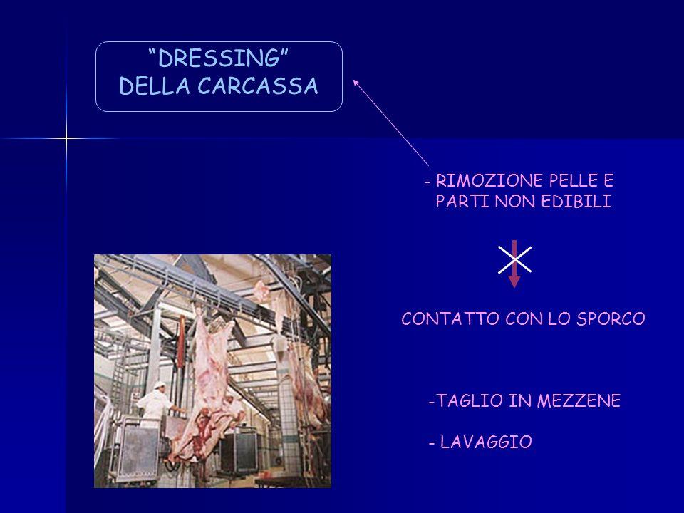 DRESSING DELLA CARCASSA - RIMOZIONE PELLE E PARTI NON EDIBILI
