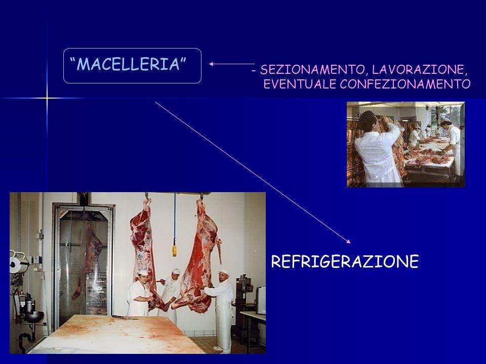 MACELLERIA REFRIGERAZIONE - SEZIONAMENTO, LAVORAZIONE,