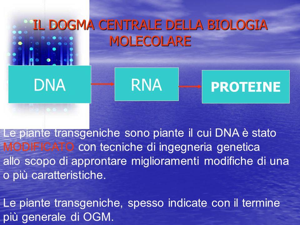 IL DOGMA CENTRALE DELLA BIOLOGIA MOLECOLARE
