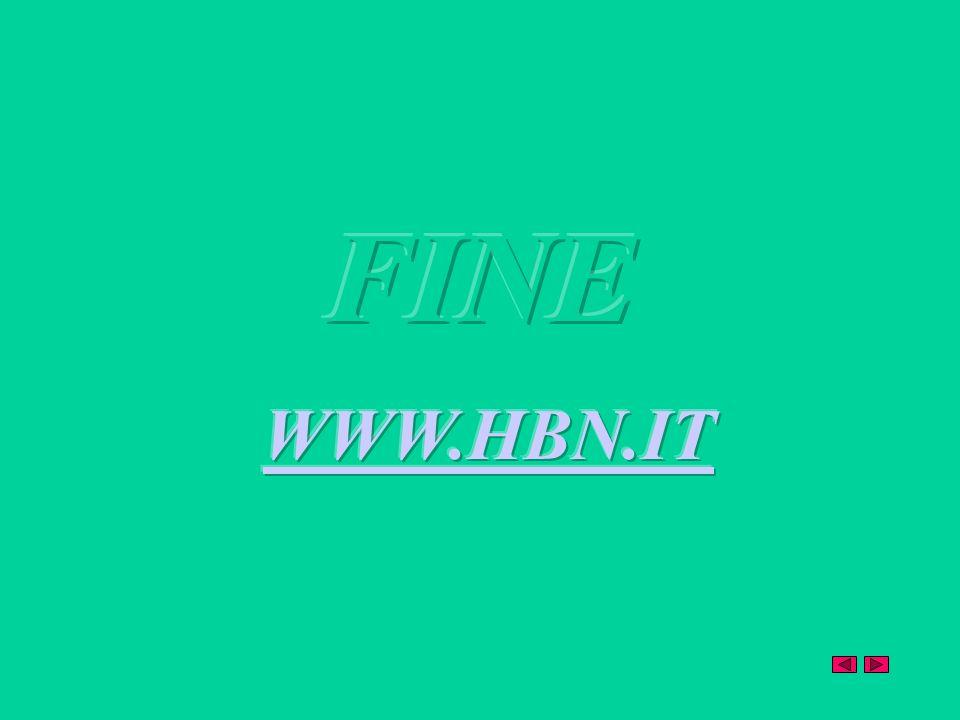 FINE WWW.HBN.IT
