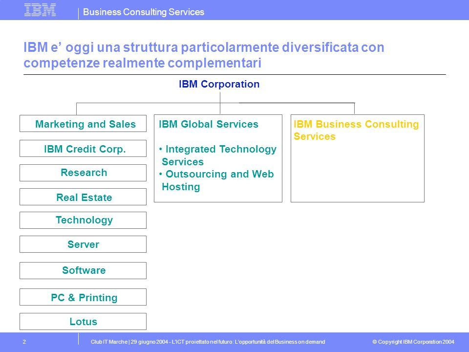 IBM e' oggi una struttura particolarmente diversificata con competenze realmente complementari