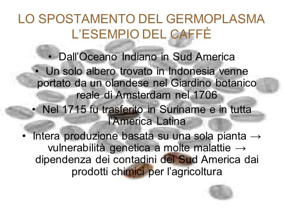 LO SPOSTAMENTO DEL GERMOPLASMA L'ESEMPIO DEL CAFFÈ