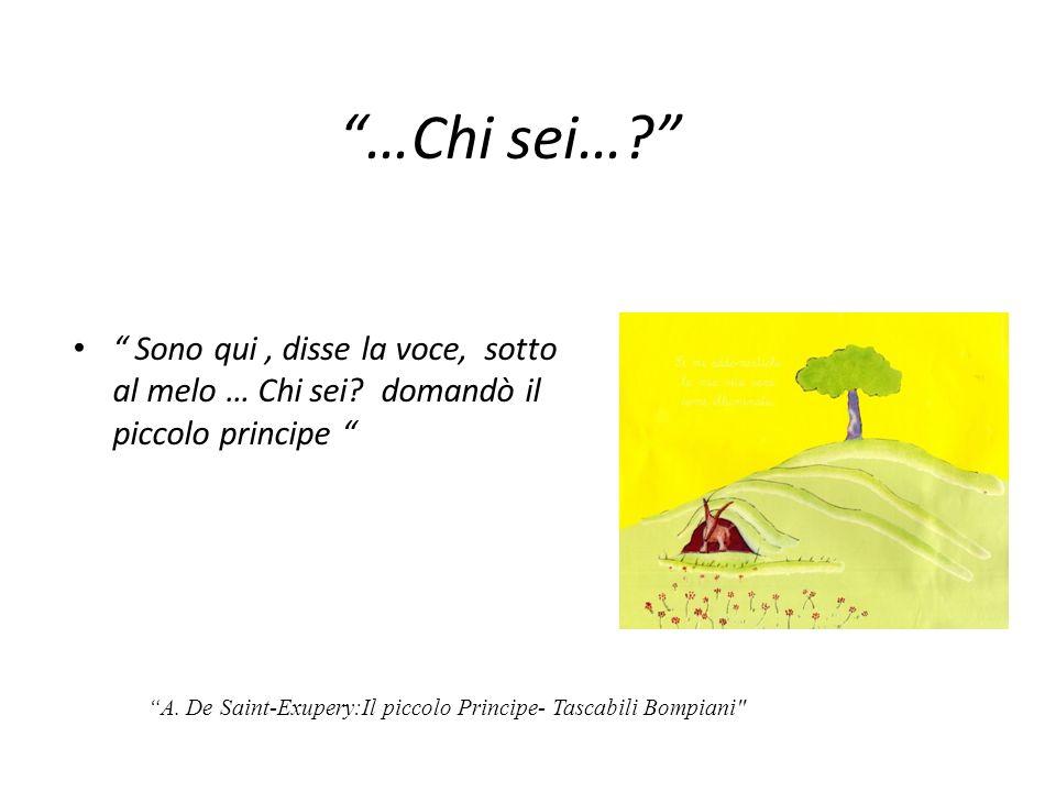 …Chi sei… Sono qui , disse la voce, sotto al melo … Chi sei domandò il piccolo principe