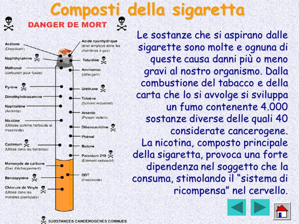 Composti della sigaretta
