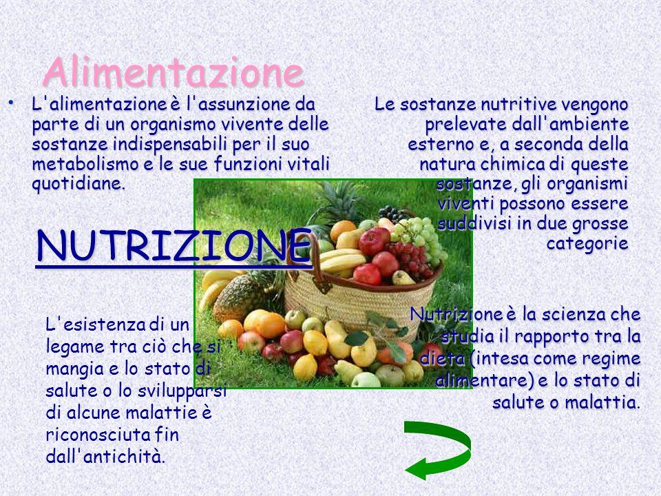 Alimentazione NUTRIZIONE