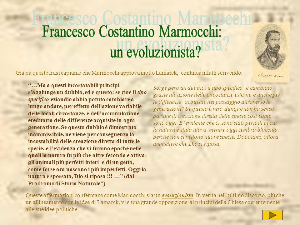 Francesco Costantino Marmocchi: