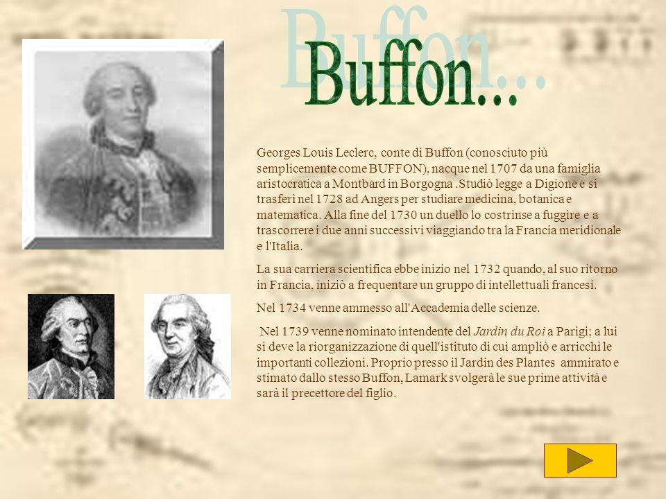 Buffon...