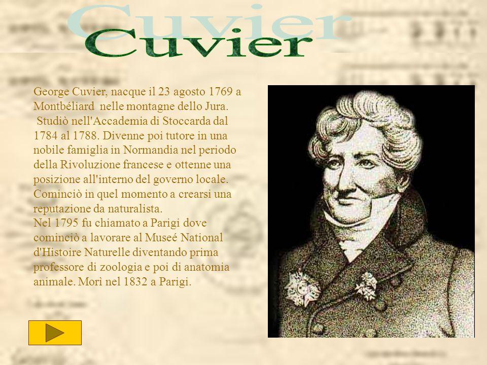 Cuvier George Cuvier, nacque il 23 agosto 1769 a Montbéliard nelle montagne dello Jura.
