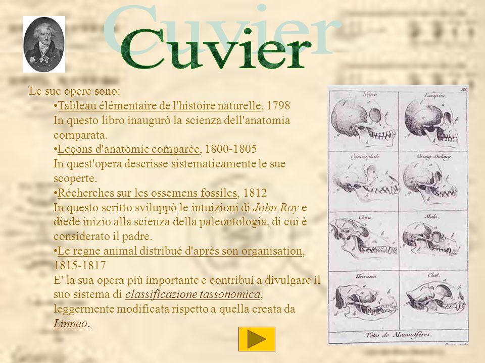 Cuvier Cuvier Le sue opere sono: