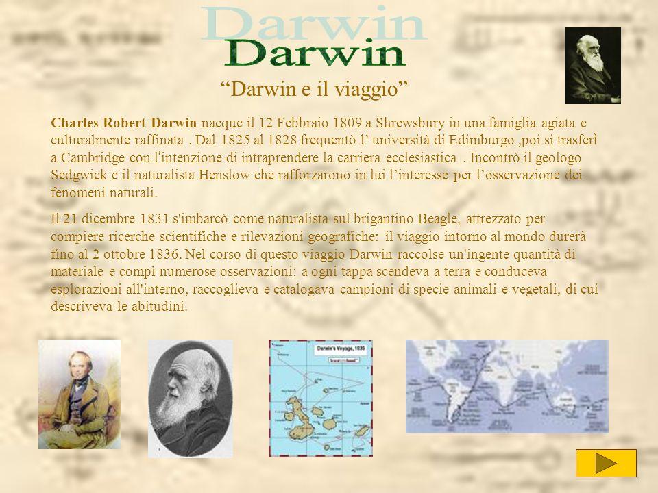 Darwin Darwin e il viaggio