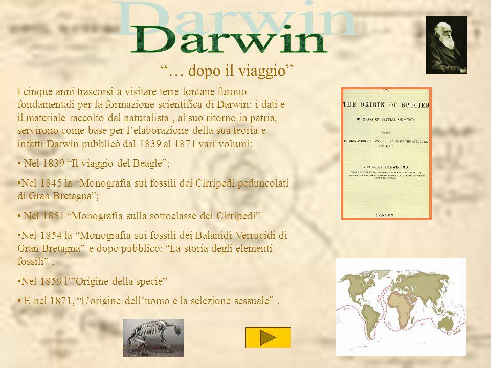 Darwin … dopo il viaggio
