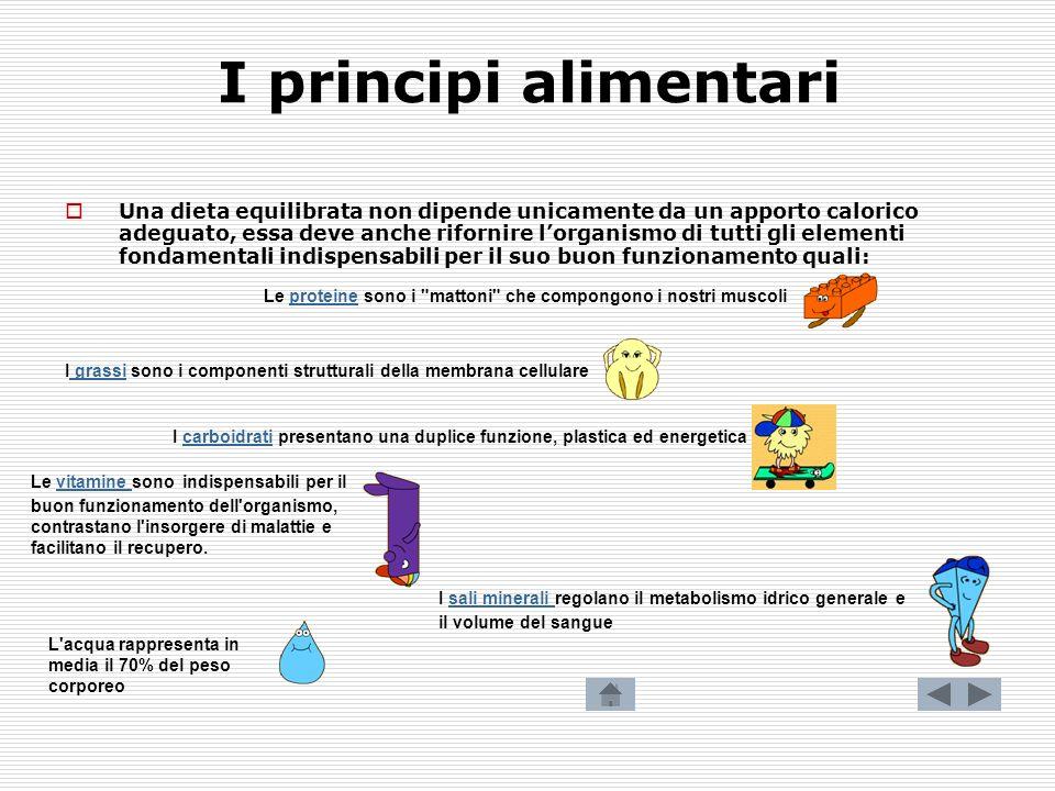 I principi alimentari