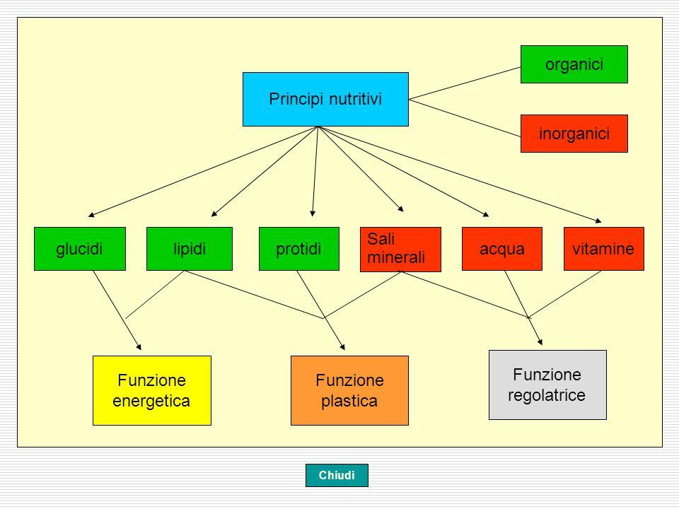 organici Principi nutritivi inorganici glucidi lipidi protidi Sali