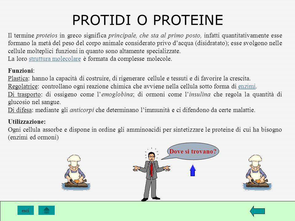PROTIDI O PROTEINE