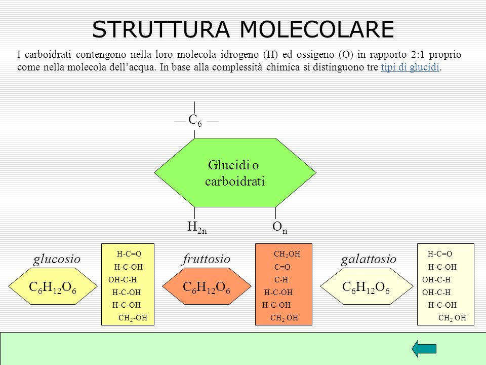STRUTTURA MOLECOLARE C6 Glucidi o carboidrati H2n On glucosio