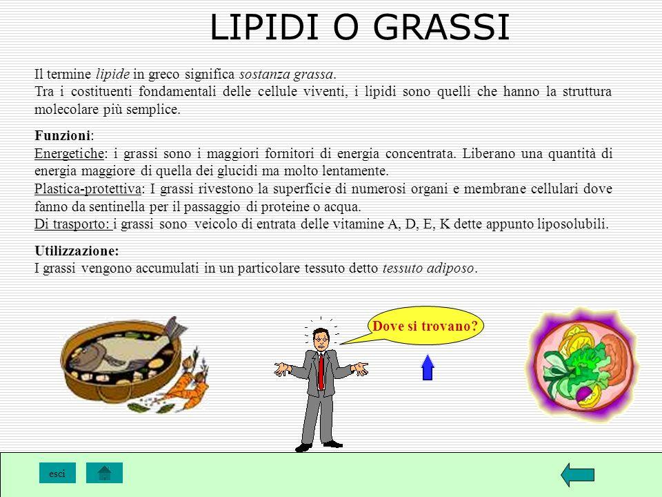 LIPIDI O GRASSI Il termine lipide in greco significa sostanza grassa.