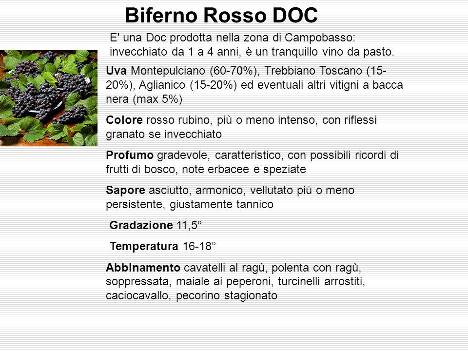 Biferno Rosso DOC E una Doc prodotta nella zona di Campobasso: invecchiato da 1 a 4 anni, è un tranquillo vino da pasto.