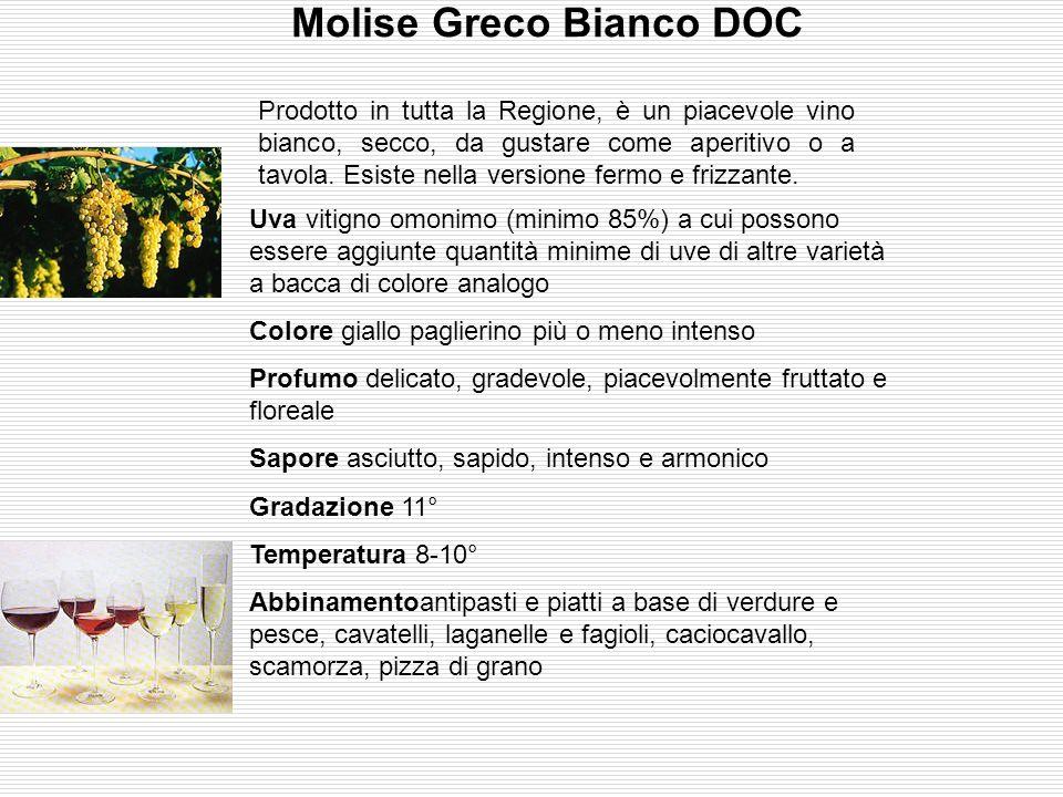 Molise Greco Bianco DOC