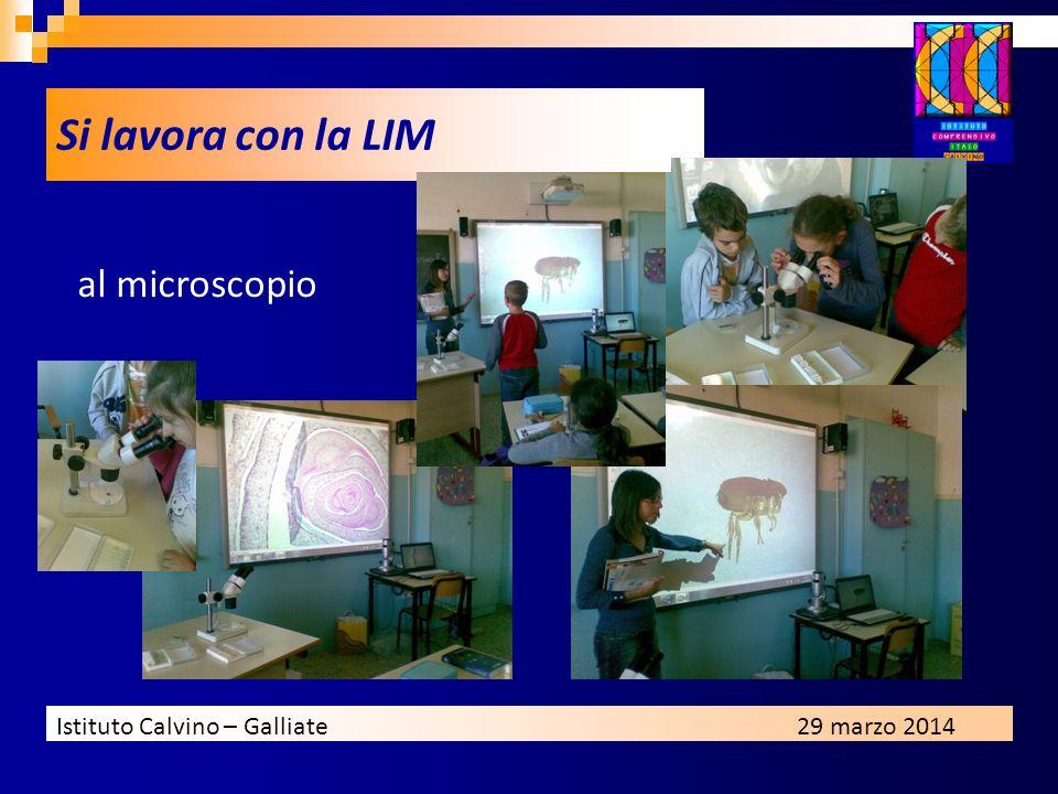 Si lavora con la LIM al microscopio