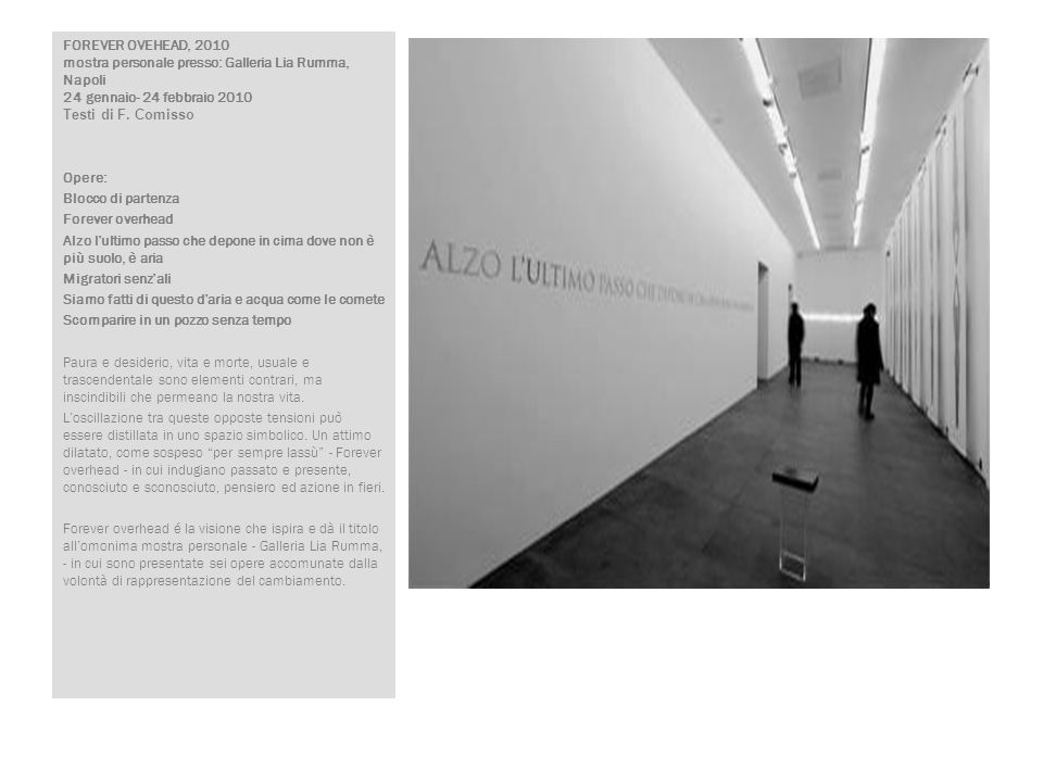 FOREVER OVEHEAD, 2010 mostra personale presso: Galleria Lia Rumma, Napoli 24 gennaio- 24 febbraio 2010 Testi di F. Comisso
