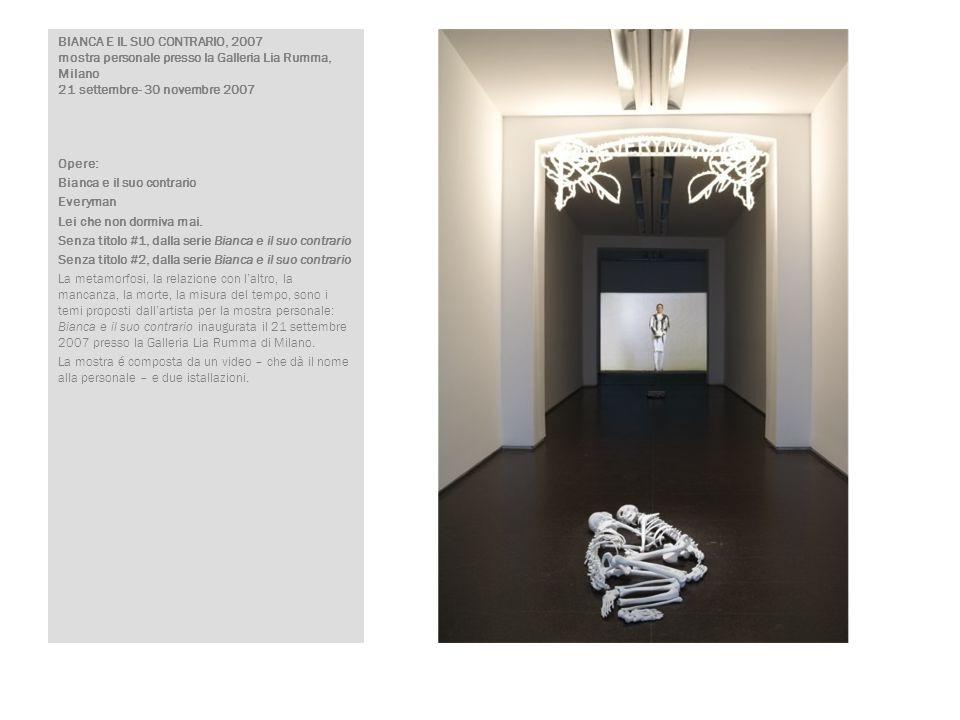 BIANCA E IL SUO CONTRARIO, 2007 mostra personale presso la Galleria Lia Rumma, Milano 21 settembre- 30 novembre 2007