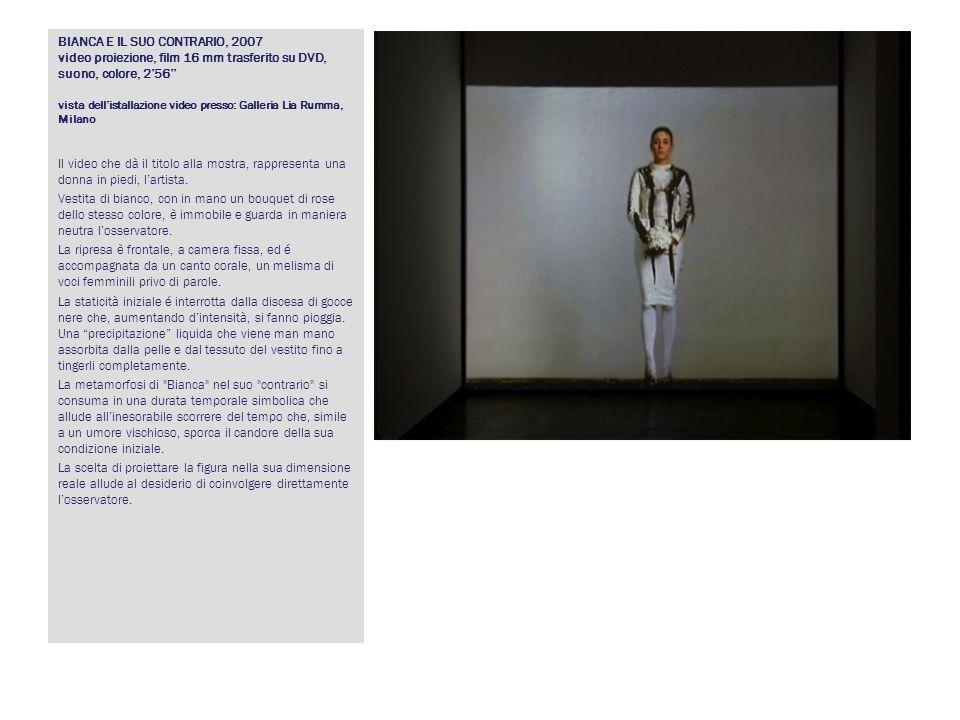 BIANCA E IL SUO CONTRARIO, 2007 video proiezione, film 16 mm trasferito su DVD, suono, colore, 2'56'' vista dell'istallazione video presso: Galleria Lia Rumma, Milano