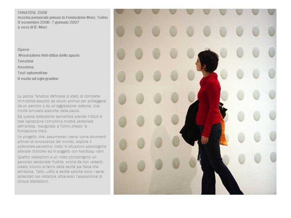 TANATOSI, 2006 mostra personale presso la Fondazione Merz, Torino 9 novembre 2006- 7 gennaio 2007 a cura di B. Merz