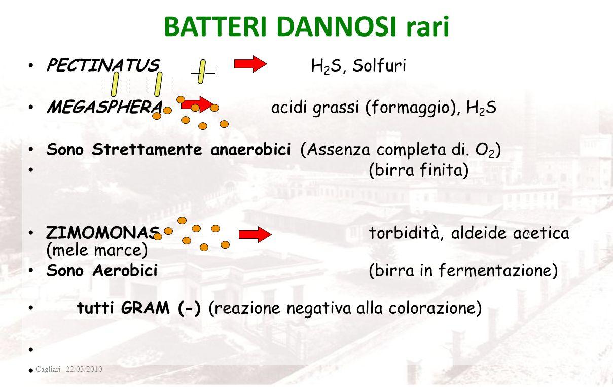 BATTERI DANNOSI rari PECTINATUS H2S, Solfuri