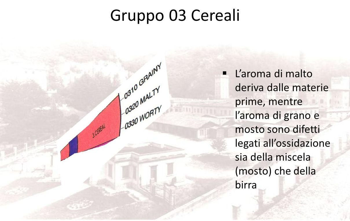 Gruppo 03 Cereali