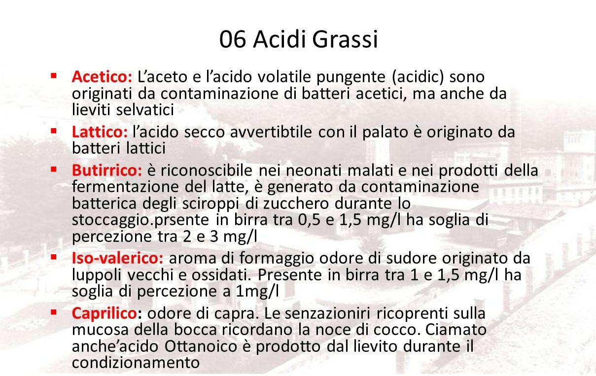 06 Acidi Grassi