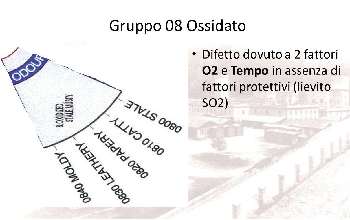 Gruppo 08 Ossidato Difetto dovuto a 2 fattori O2 e Tempo in assenza di fattori protettivi (lievito SO2)