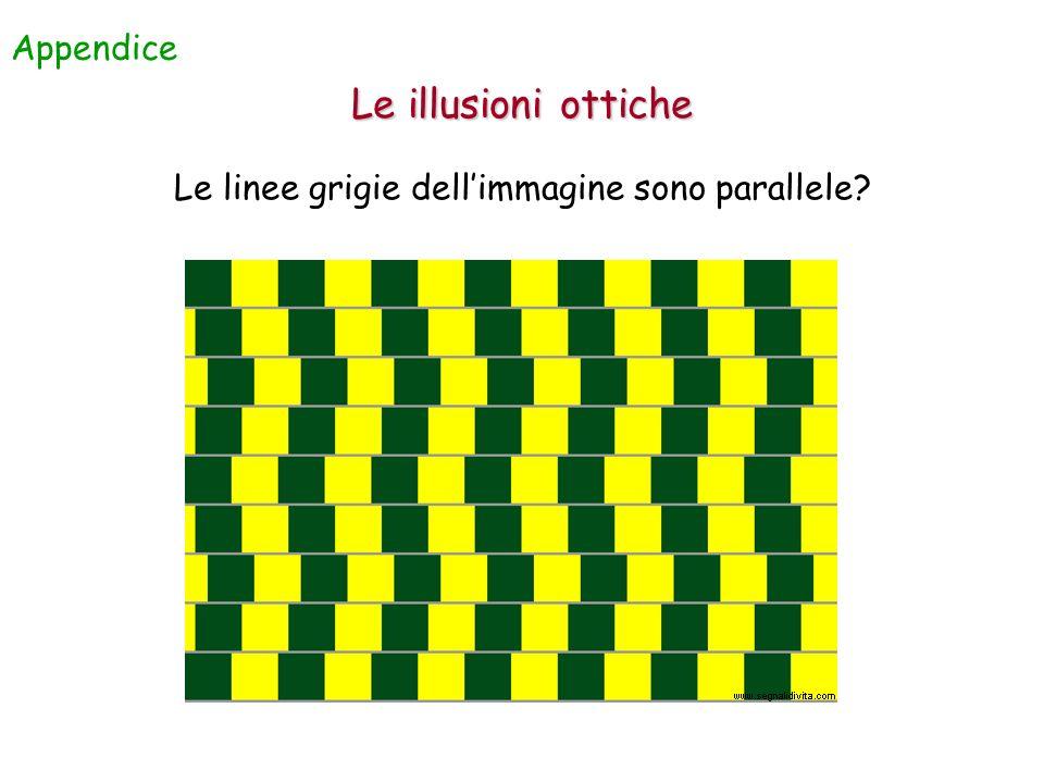 Le linee grigie dell'immagine sono parallele