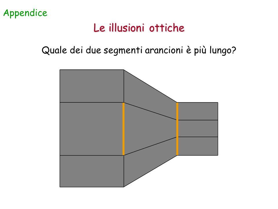 Quale dei due segmenti arancioni è più lungo