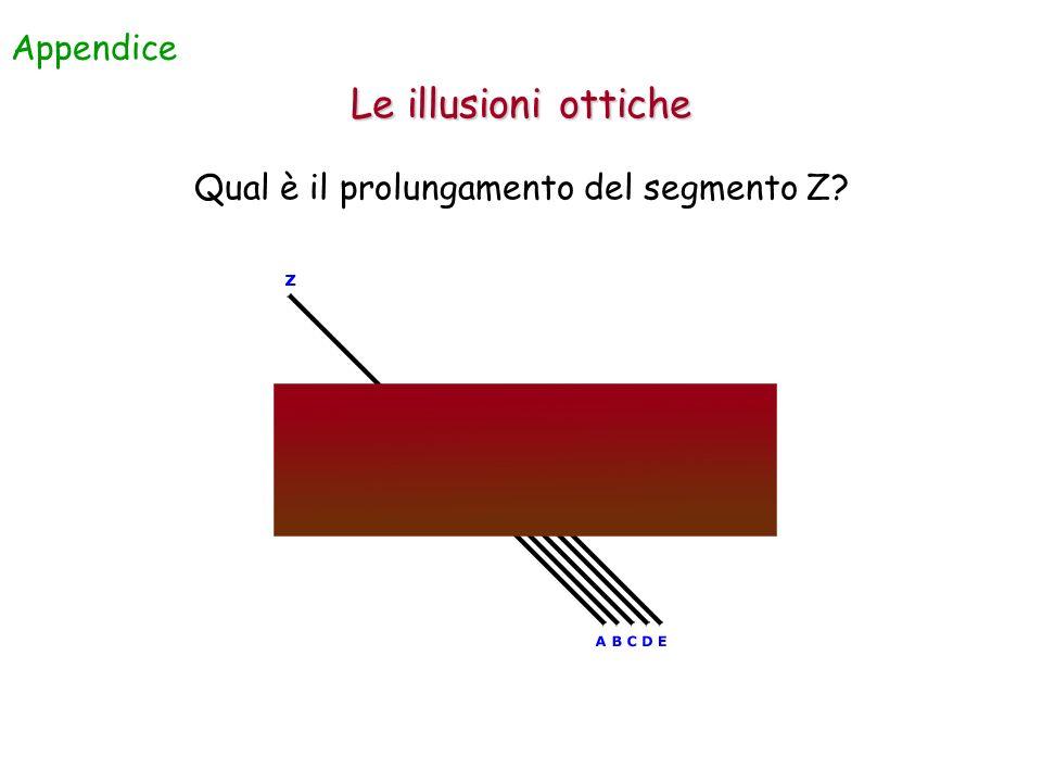Qual è il prolungamento del segmento Z