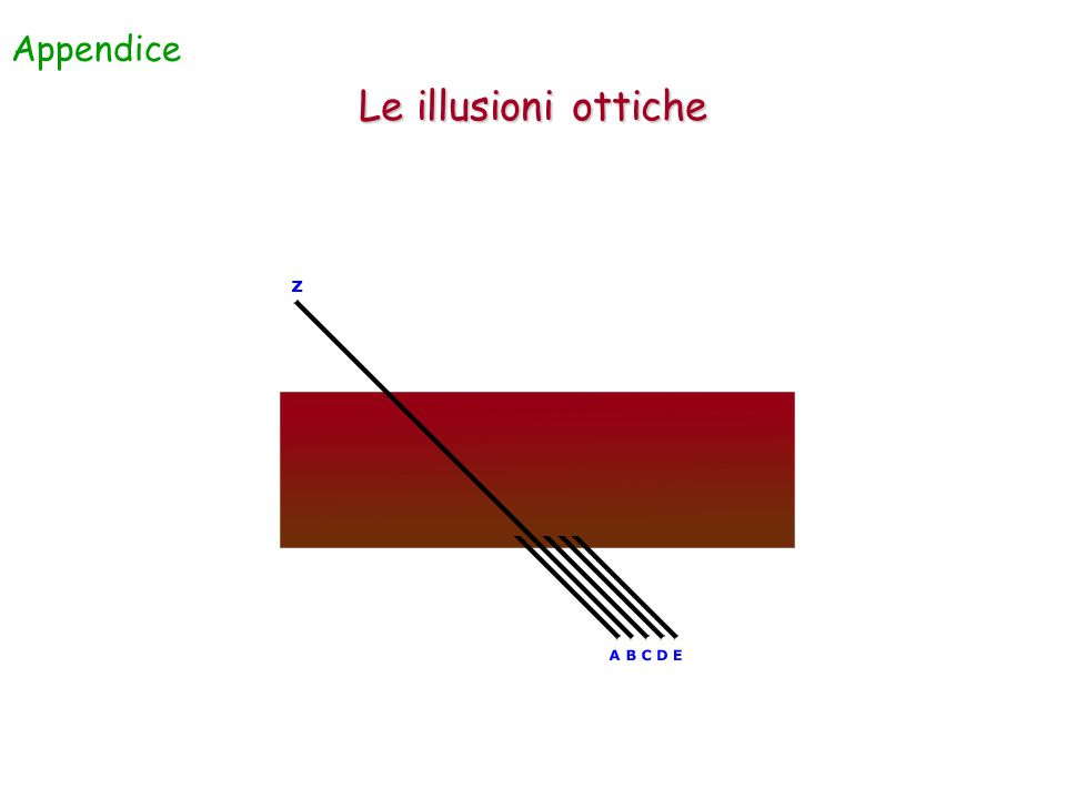 Appendice Le illusioni ottiche