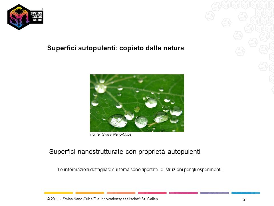 Superfici autopulenti: copiato dalla natura