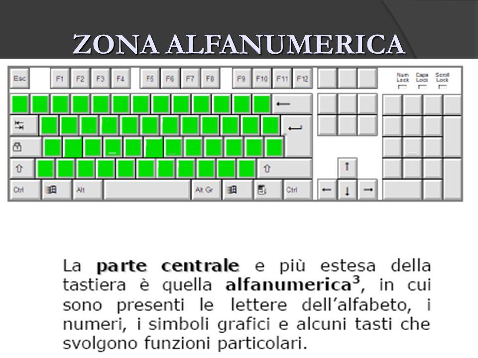 ZONA ALFANUMERICA