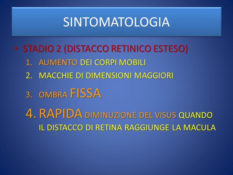 SINTOMATOLOGIA STADIO 2 (DISTACCO RETINICO ESTESO) AUMENTO DEI CORPI MOBILI. MACCHIE DI DIMENSIONI MAGGIORI.