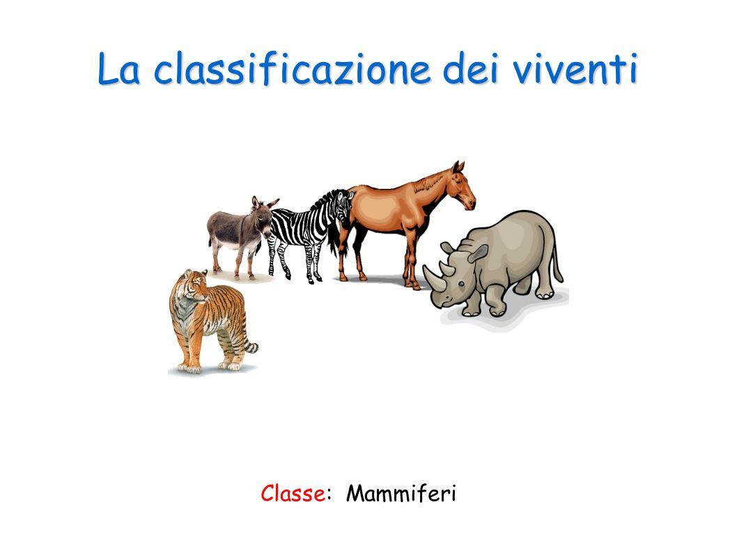 La classificazione dei viventi