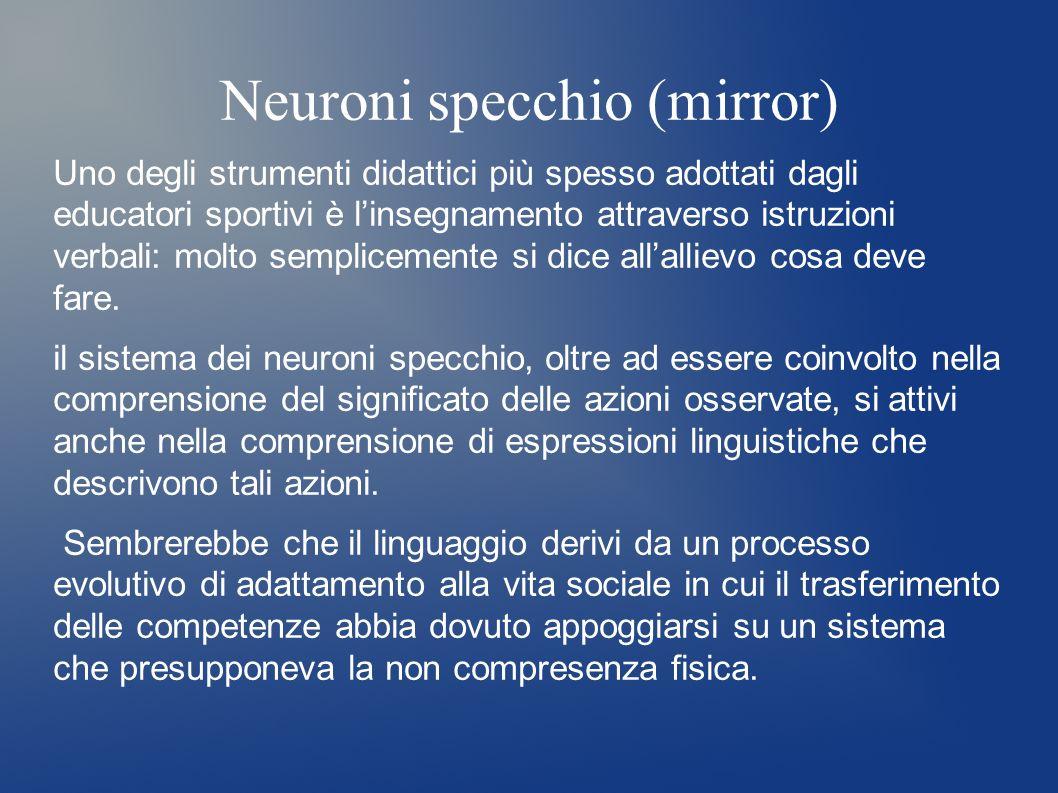 Neuroni specchio (mirror)
