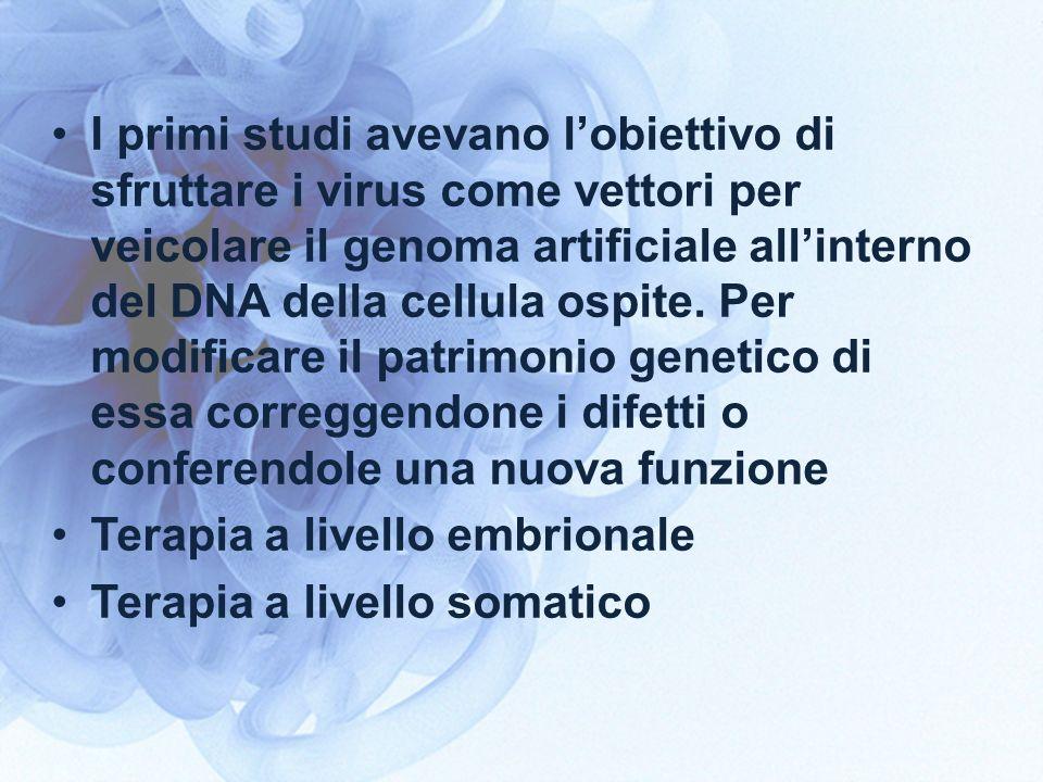 I primi studi avevano l'obiettivo di sfruttare i virus come vettori per veicolare il genoma artificiale all'interno del DNA della cellula ospite. Per modificare il patrimonio genetico di essa correggendone i difetti o conferendole una nuova funzione
