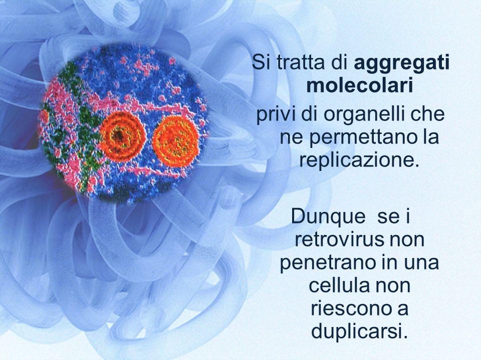 Si tratta di aggregati molecolari
