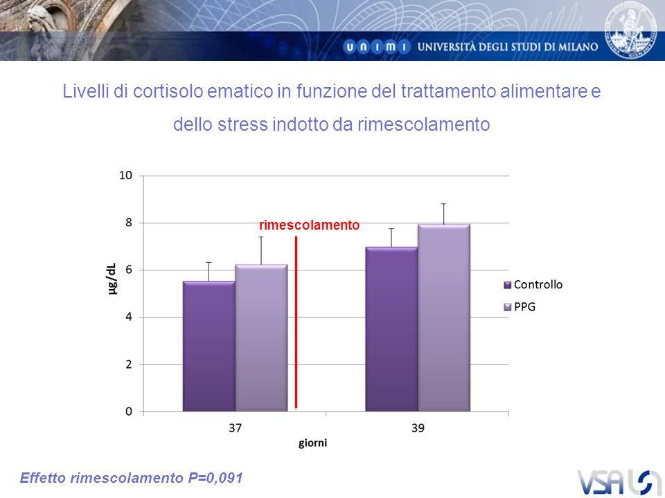 Livelli di cortisolo ematico in funzione del trattamento alimentare e dello stress indotto da rimescolamento