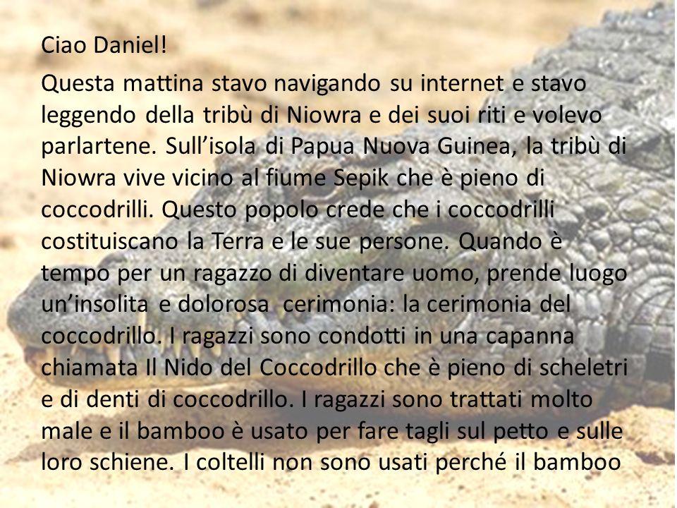 Ciao Daniel.